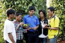 Trí thức trẻ giúp dân làm kinh tế (ảnh – Internet).